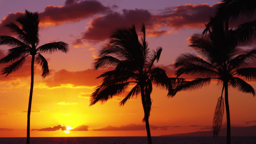 Relaxing Tropical Island Beach at Sunset