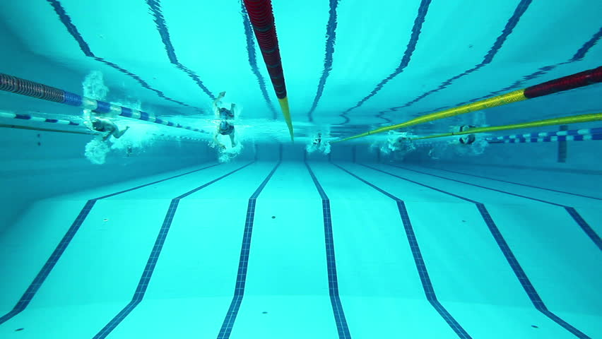 swimming pool and swimmer during the training