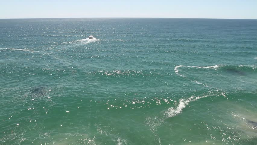 Open ocean with rolling waves and tourist sightseeing boat at horizon, new zealand