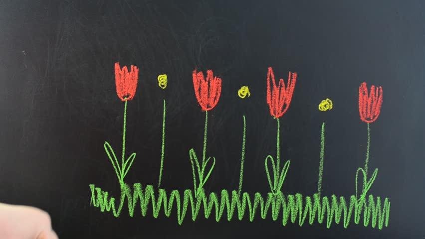 Flowers. | Shutterstock HD Video #25118696