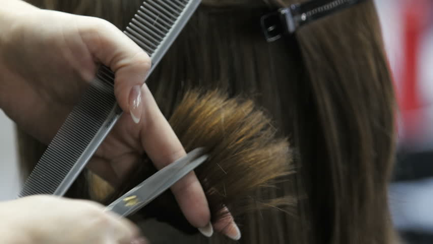 The hairdresser cuts the girl. Makes a hairstyle for a woman. Haircut close-up. Scissors and comb at the stylist. Beautiful hair of a young woman.