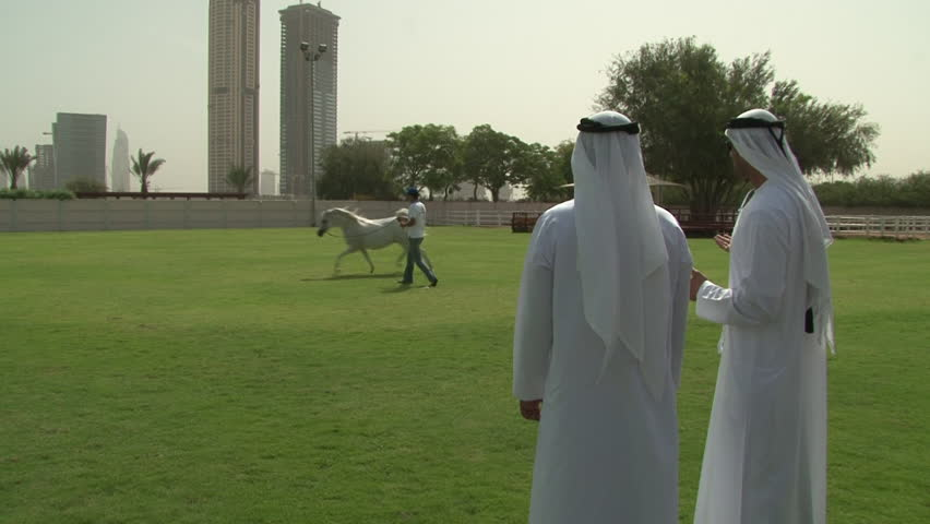 DUBAI, UAE - CIRCA 2008: View of two Emirati men looking at a handler and a Gray Arabian thoroughbred in a manege at the Dubai Arabian Horse Stud farm. The farm produces many international champions.