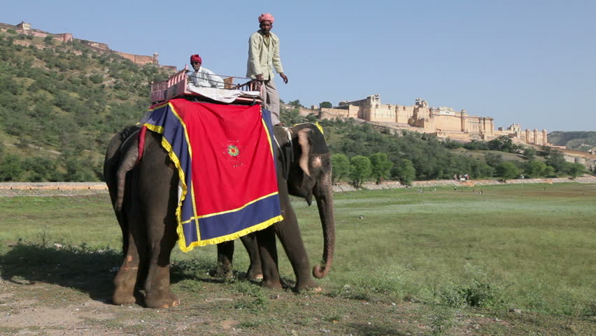 JAIPUR, INDIA - CIRCA MAY 2011: Elephants waiting to carry tourists at Amber Fort