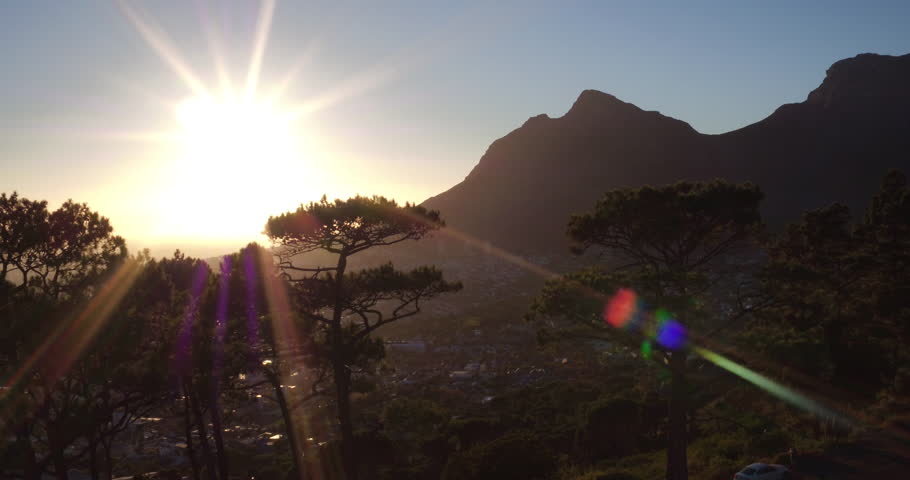 Drone reveal trough the trees on Signal hill into Cape Town city during sunrise. | Shutterstock HD Video #26081618