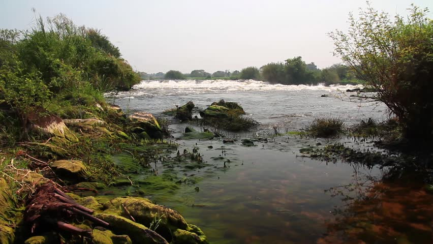 River Nile south Sudan Beautiful shot of River Nile in south sudan