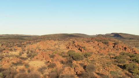 Looking down at a herd of wild camels in the Australian Outback near Alice Springs