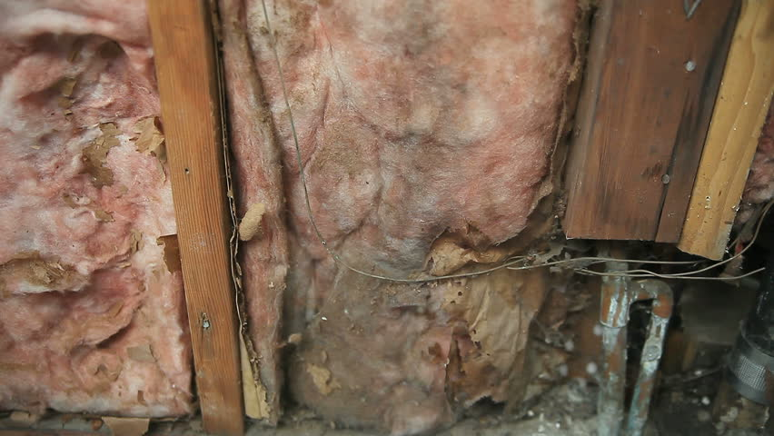 a wall with a portion of the exterior wood removed to show insulation, pipes and wiring
