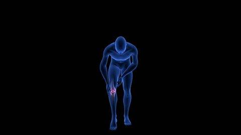 Knee Pain. Blue Human Anatomy Body 3D Scan render - rotating seamless loop