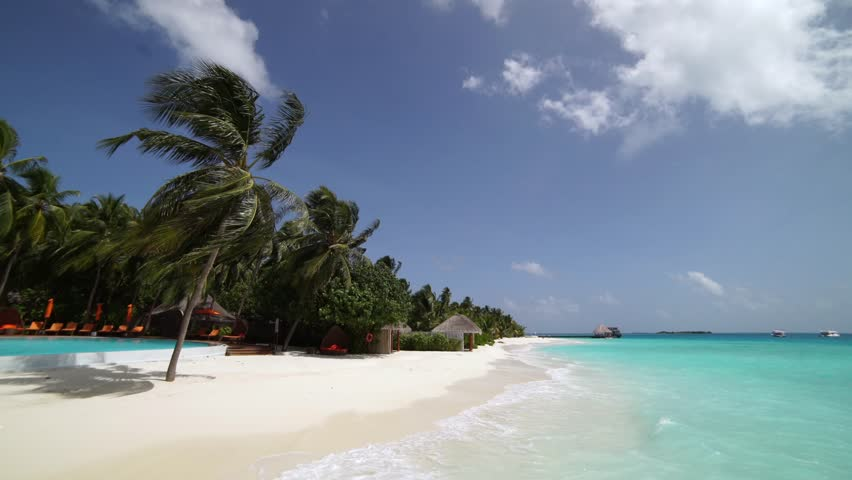 Luxury tropical scene with calm maldivian ocean water and palm tree cinematic seascape view in sunny ultraHD video using tripod | Shutterstock HD Video #27564928