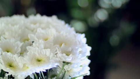 close-up, Flower bouquet in the rays of light, rotation, the floral composition consists of white Chrysanthemum Chamomile bacardi. In the background a lot of greenery