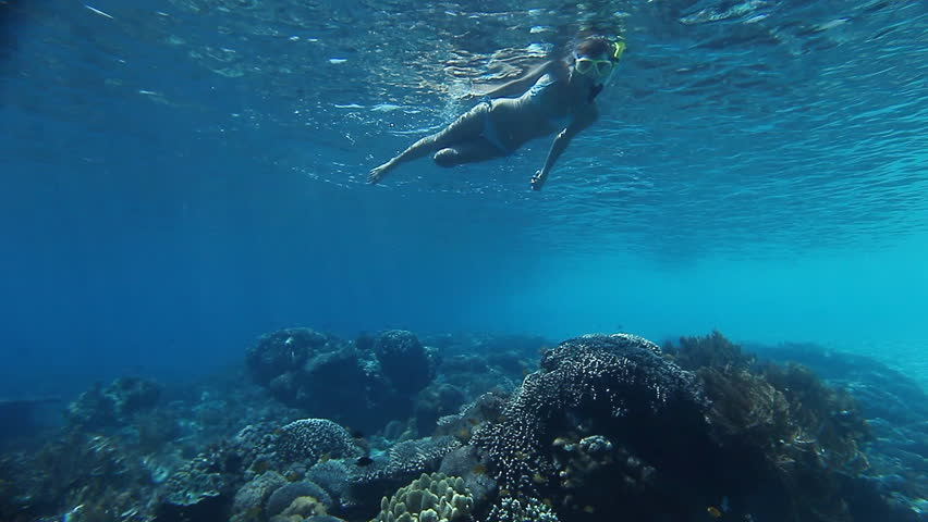 Underwater scene with young woman snorkeling over coral reef in tropical sea