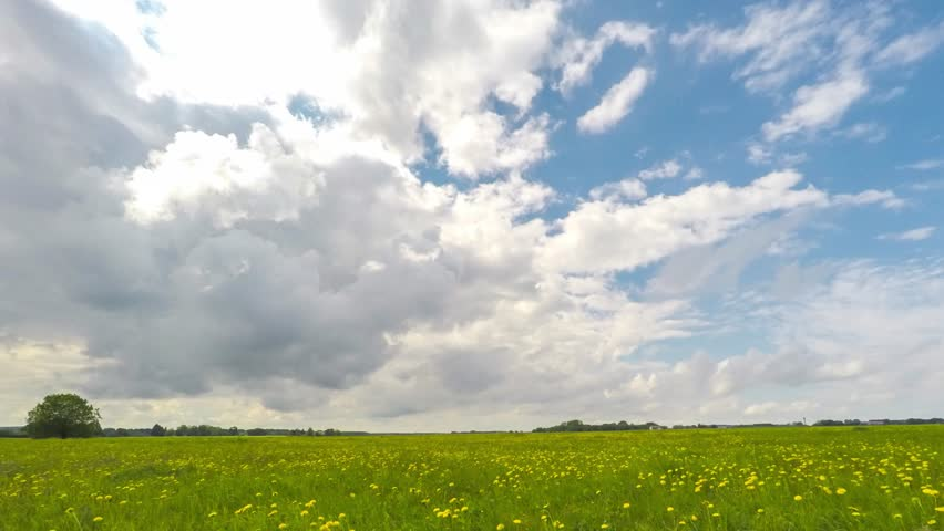 Green field and cloudy sky timelapse. Beautiful summer landscape.