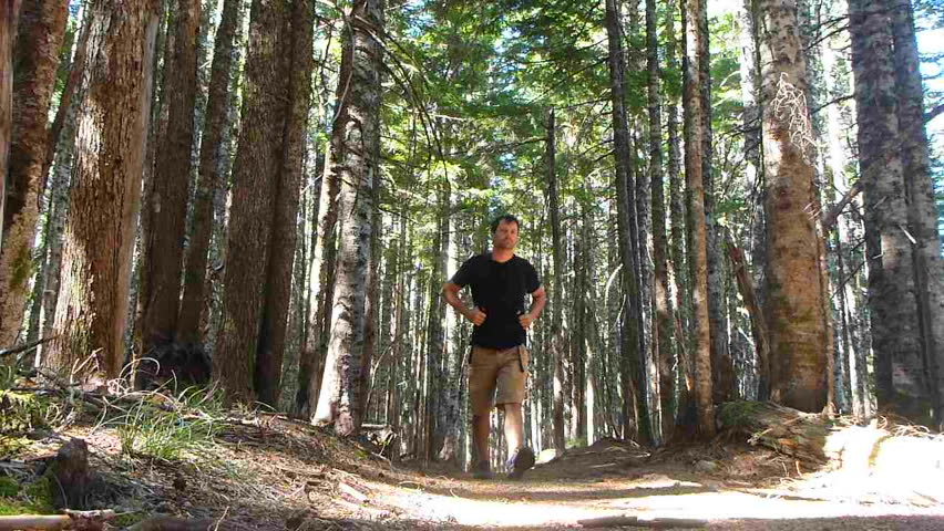 man hiking up trail through thick forest in the Pacific Northwest, Oregon.