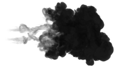 One ink flow, infusion black dye cloud or smoke, ink inject on white in slow motion. Black tint splatter in water. Inky background or smoke backdrop, for ink effects use luma matte like alpha mask