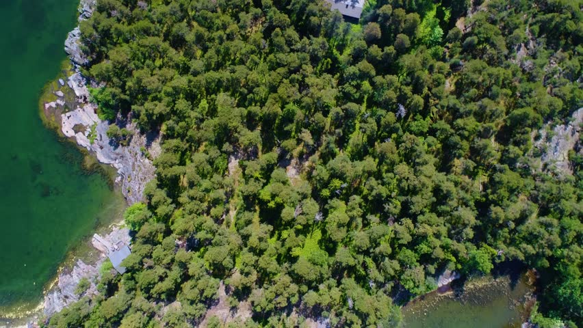 4K HD Aerial view camera moves rising up from green forest island filmed at Baltic Sea of mixed tree tops of pine trees and birches revealing shoreline and sea water. Inkoo. Finland. Scandinavia. 2017
