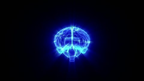 Human brain activity, animation loop
