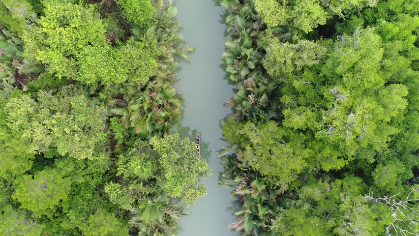 exotic panorama from indonesia's national park river