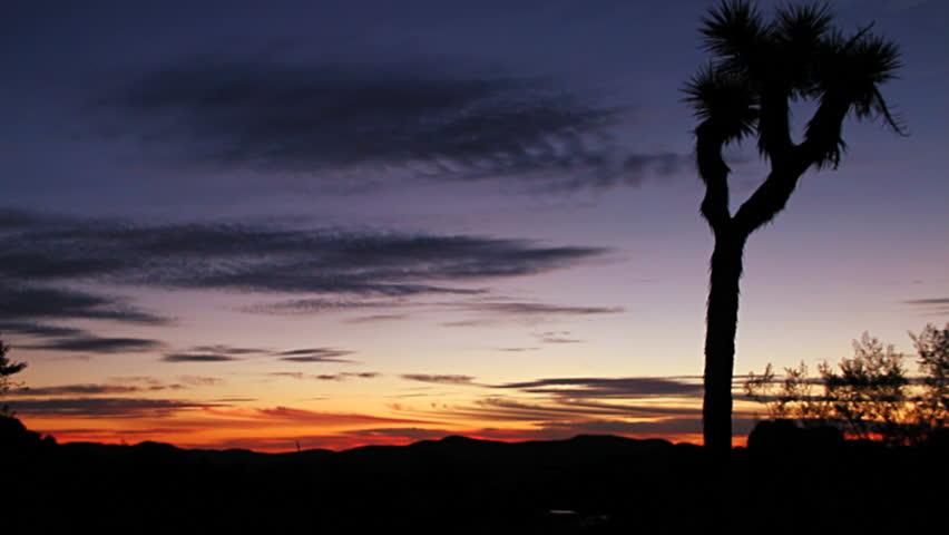 Beautiful Joshua Tree Sunset in Real HD.