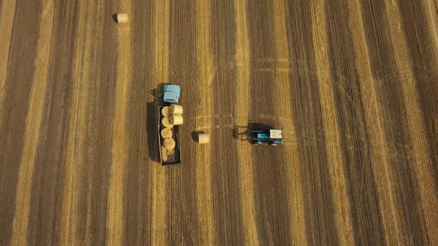Aerial: Tractor loading hay bales on the trailer. Cylindrical bundle of hay. Agriculture machine at work | Shutterstock HD Video #29174368