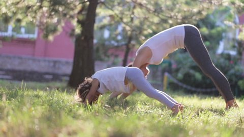 Young sporty mother and little cute daughter doing morning yoga exercise together in a green park