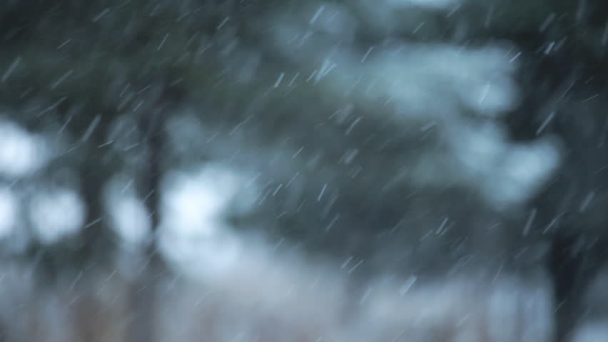 Snow falling with an intentionally blurry background of spruce trees for a dreamy winter look. | Shutterstock HD Video #2952343