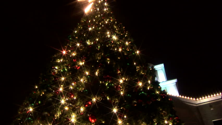 The camera tilts down from the top of a large Christmas tree in a town square.