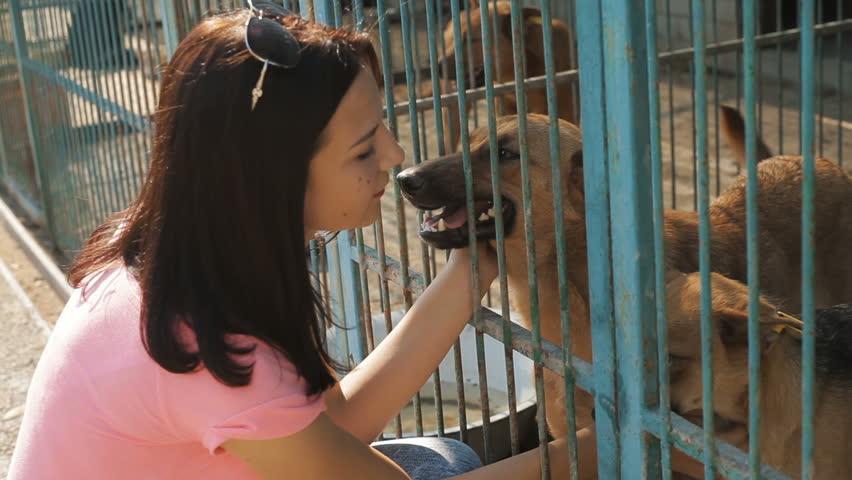 Girl volunteer in the nursery for dogs. Shelter for stray dogs