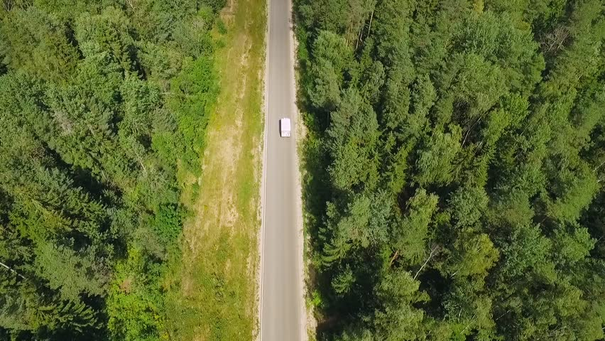 Summer, aerial view, van driving along the road near the forest, view from height.  #29805118