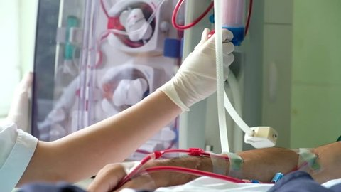 The doctor in the process of hemodialysis procedure