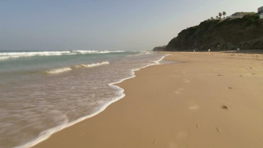 Speed dating deerfield beach