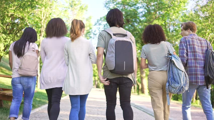 Back view of multiethnic group of young students friends walking outdoors   Shutterstock HD Video #30305938