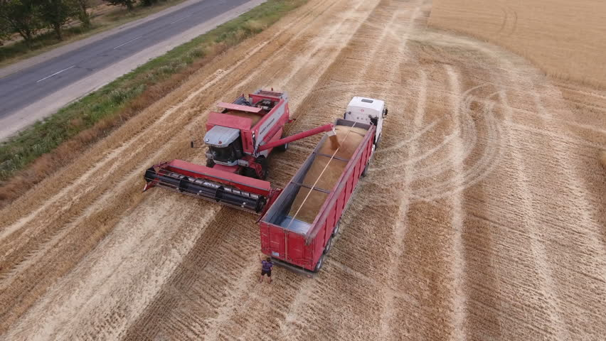 Nikolaev, Ukraine - June 29, 2017:Splendid bird`s eye view of a powerful combine harvester loading a dump truck having an open box bed with ripe grain. The yellow wheat looks fine and fabulous | Shutterstock HD Video #30721138
