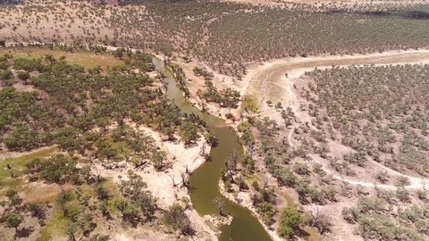 Aerial Helicopter view of dried up and drought affected Murray River Wetlands, lagoon, Billabongs and Swamps along River back water with only a trickle left.