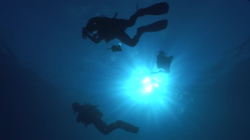 Scuba divers ascending surface going back to boat | Shutterstock HD Video #31041868