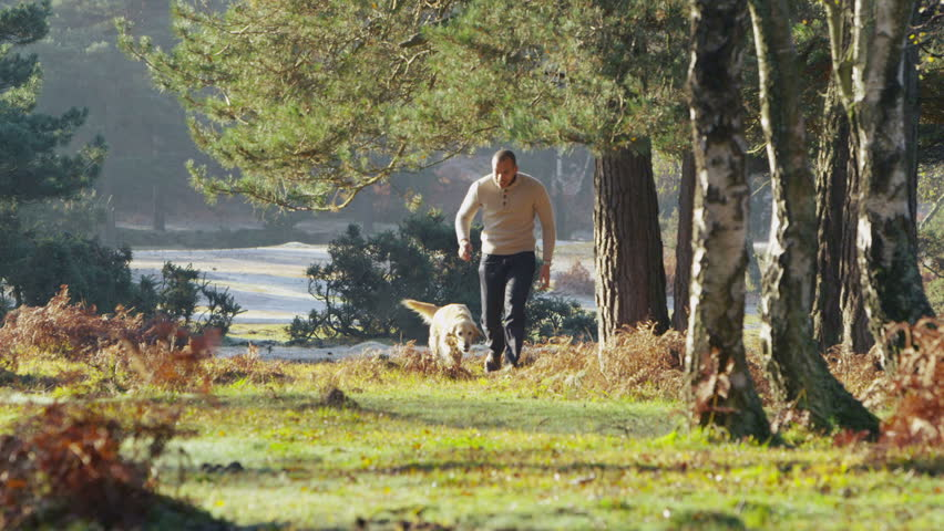 A handsome man is running with his dog through a lush green forest in the sunshine in slow motion