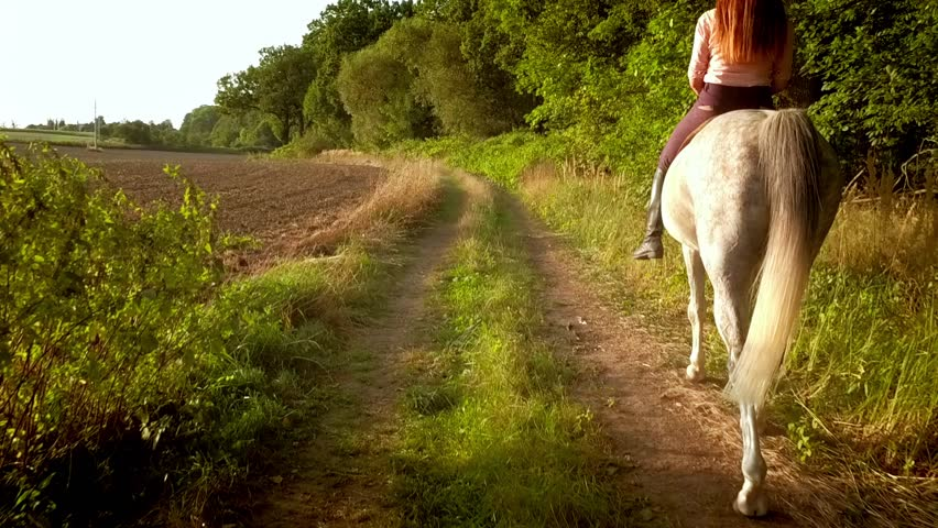 Young woman riding horse on country road during summer sunset