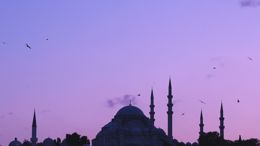 Slowmotion view of Suleymaniye mosque with seagulls flying around on sunset from Bosphorus in Istanbul Turkey
