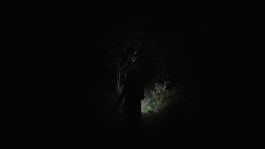 Chasing girl through the woods at night.Stalker or killer runs after terrified woman in dark forest. Moving through scary wooded area lit only with flashlight after victim.