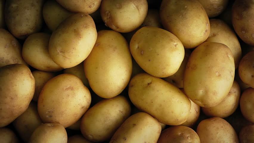 Potato Pile Rotating