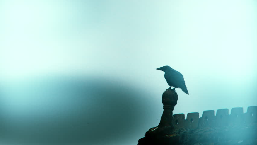 Stylized spooky shot of an old crow taking flight in slow motion off an old chapels roof