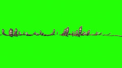 Invasion of Cobra Snakes Group Green Screen Front 3D Rendering Animation