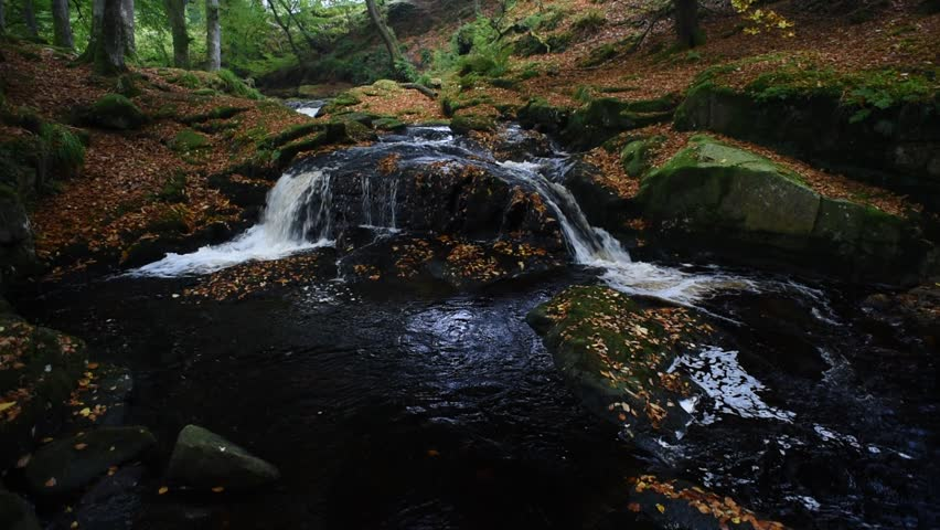 Autumn river in the forest in Wicklow Mountains - Ireland/ Autumn river/ Autumn river cascade in Ireland | Shutterstock HD Video #32045548