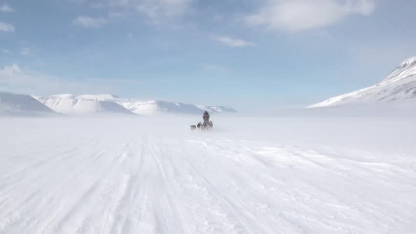 People expedition on dog sled team husky Eskimo road of North Pole in Arctic. Way from airport Longyear to Pyramid Spitsbergen on background of glacier mountains Svalbard in Norway.