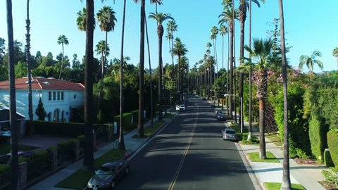 Aerial shot of Beverly Hills palm trees. Rich and Luxurious Area in Los Angeles, California / 09.09.2017