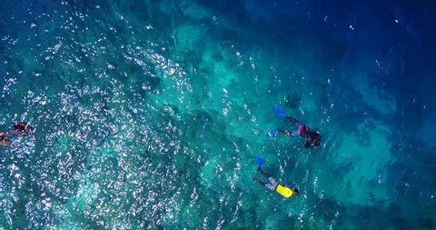 v11860 many people young boys girls snorkeling over coral reef with drone aerial flying view in crystal clear aqua blue shallow water