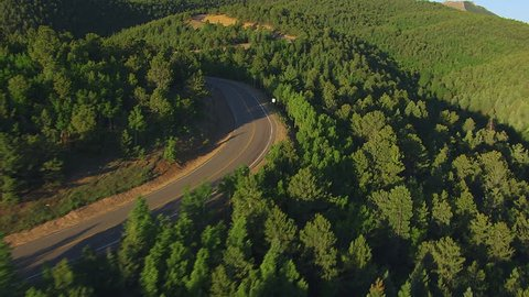WS AERIAL Road winding through forest, Pikes Peak / Colorado, USA