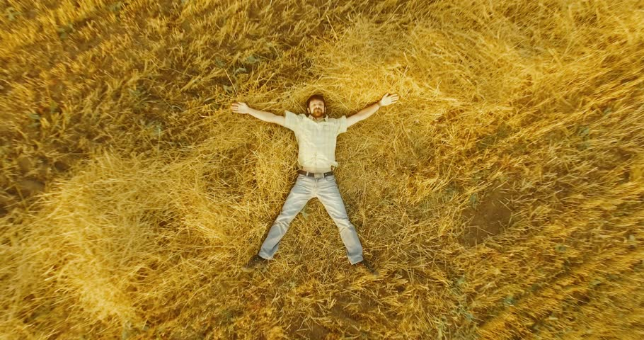 Aerial UHD 4K view. Vertical motion flight over formalwear man lying on yellow wheat field at sunny summer day. Top view on handsome relaxing man. | Shutterstock HD Video #32551498
