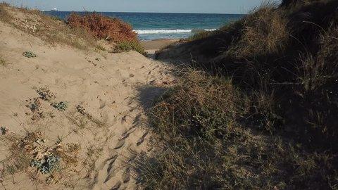 View of the sandy beach from the air. Spain, Valencia , playa el saler, Mediterranean sea