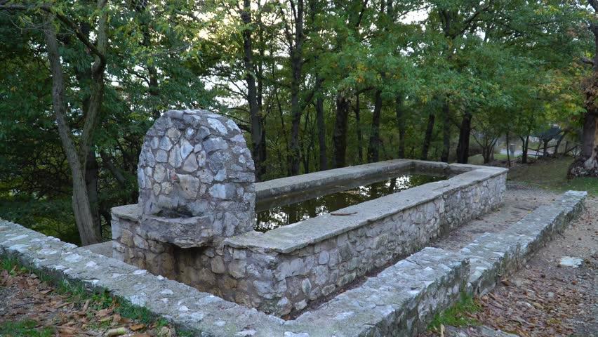 100 Japanese Zen Rock Garden Viewing Historical