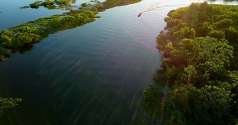 Vegetation of Native forest in the Pantanal Biome. Aerial image of the Boat sails in the river. Mato Grosso do Sul state, Central-Western Brazil.